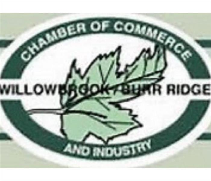 Community We've joined the Willowbrook-Burr Ridge Chamber of Commerce