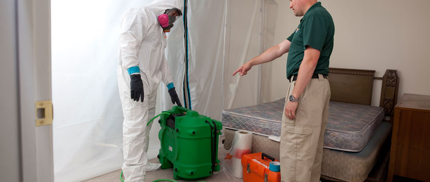 Hinsdale, IL mold removal process